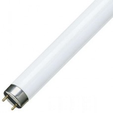 TL-D 36W/ 765 G13  PHILIPS (25) - лампа  1250шт./палл